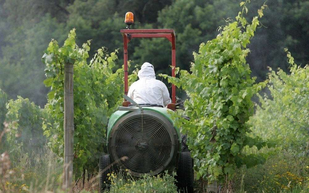 pesticides contre vin naturel